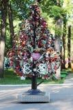 PERMANENTE, RÚSSIA - JUNHO, 23, 2014: Árvore com fechamentos do casamento Foto de Stock