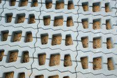 Permeable Pavers (Lawn grid) Stock Photo
