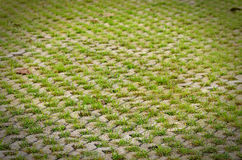 Permeable Pavers on a square Royalty Free Stock Photography