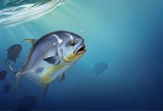 Permita peixes no blochii branco do Trachinotus ilustração do vetor