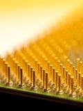 Perni dell'oro del microprocessore Fotografia Stock