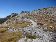 Pernice bianca Ridge Trail nella caduta Fotografie Stock Libere da Diritti