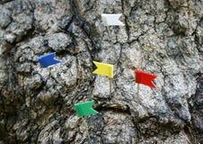 Perno della bandiera del segno Immagini Stock