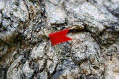 Perno della bandiera del segno Fotografie Stock Libere da Diritti
