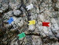 Perno della bandiera del segno Fotografia Stock