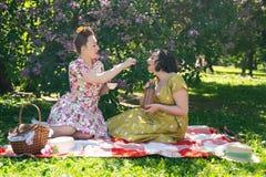 Perno grazioso due sulle signore che hanno picnic piacevole nel parco della città in un giorno soleggiato insieme gli amici di ra immagini stock libere da diritti