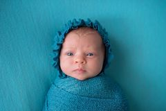 Perplexed Newborn Baby Girl Wearing a Turquoise Blue Bonnet royalty free stock photography