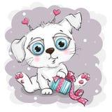 Perrito blanco hermoso con la caja de regalo Fotografía de archivo