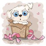 Perrito blanco hermoso en una caja de regalo Foto de archivo