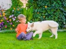 Perrito blanco y niño suizos del ` s del pastor que juegan junto en g verde foto de archivo libre de regalías