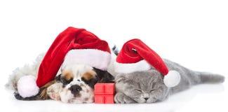Perrito de cocker spaniel y gatito minúsculo con la caja de regalo que duermen en los sombreros rojos de santa Aislado en blanco Imagen de archivo