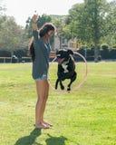 Perrito de enseñanza de la muchacha nuevos trucos Foto de archivo libre de regalías