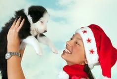 Perrito de la Feliz Navidad Foto de archivo libre de regalías