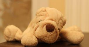 Perrito de la felpa Imagen de archivo libre de regalías