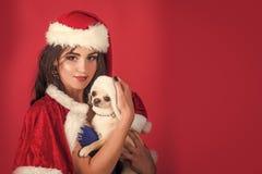 Perrito de la muchacha y de la chihuahua en los sombreros de santa en fondo rojo fotografía de archivo libre de regalías