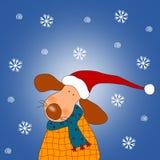 Perrito de la Navidad Foto de archivo libre de regalías