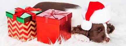 Perrito de la Navidad con la bandera de los presentes foto de archivo