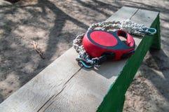 Perrito del correo Concepto de obediencia del entrenamiento del perro Correo rojo de la ruleta Accesorios del animal doméstico Pe Fotos de archivo
