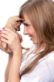 Perrito del terrier de juguete Fotos de archivo