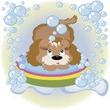 Perrito en el cuarto de baño. Fotografía de archivo libre de regalías
