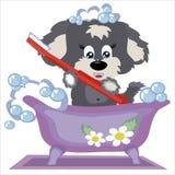 Perrito en el cuarto de baño. Imagen de archivo libre de regalías