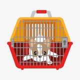 perrito lindo del perro dentro del portador plástico ilustración del vector