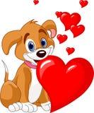 Perrito que lleva a cabo un corazón rojo en su boca stock de ilustración