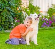 Perrito suizo blanco del ` s del pastor del abarcamiento del muchacho en hierba verde Fotografía de archivo libre de regalías