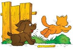 Perrito y gatito Imágenes de archivo libres de regalías