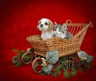 Perrito y gatito de la Navidad. imagenes de archivo