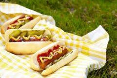 Perritos calientes asados a la parrilla con la mostaza, la salsa de tomate y el condimento Fotos de archivo libres de regalías