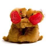 Perritos de la tarjeta del día de San Valentín Imagen de archivo libre de regalías