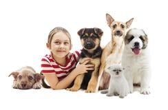 Perritos del abarcamiento del niño Imagen de archivo libre de regalías