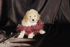 Perro, Año Nuevo Foto de archivo