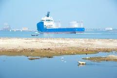 Perro abandonado en el área y la costa del agua contaminada Foto de archivo