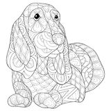 Perro adulto del beagle de la página del colorante Imagen de archivo