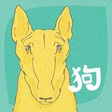Perro amarillo bull terrier e inscripción en chino Fotos de archivo