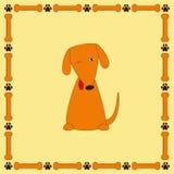Perro astuto lindo con la lengua que resalta en marco con los huesos y la pata Foto de archivo libre de regalías