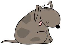 Perro avergonzado ilustración del vector