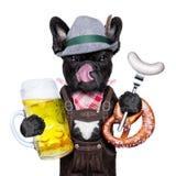 Perro bávaro de la celebración de la cerveza fotos de archivo libres de regalías