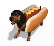 Perro basset con el traje del perrito caliente Imagen de archivo libre de regalías