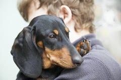 Perro basset de la raza del perrito del perro en el hombro de un muchacho, adolescente a Imágenes de archivo libres de regalías