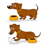 Perro basset en la acción Fotos de archivo