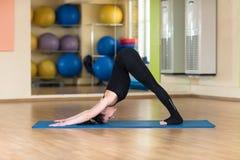 Perro boca abajo practicante de la yoga de la mujer Imágenes de archivo libres de regalías
