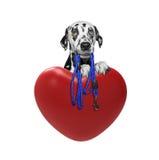Perro bonito de las tarjetas del día de San Valentín Foto de archivo libre de regalías