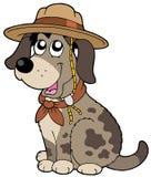 Perro cómodo en sombrero del explorador Fotografía de archivo