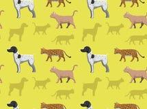 Perro Cat Wallpaper 1 Fotos de archivo libres de regalías