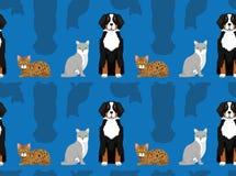 Perro Cat Wallpaper 3 Fotografía de archivo