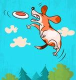 Perro con el disco volador Fotos de archivo