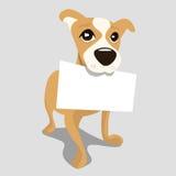 Perro con el papel del mensaje Imagenes de archivo